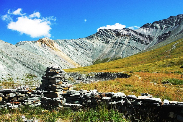 The Edelweiss Valley   Altai